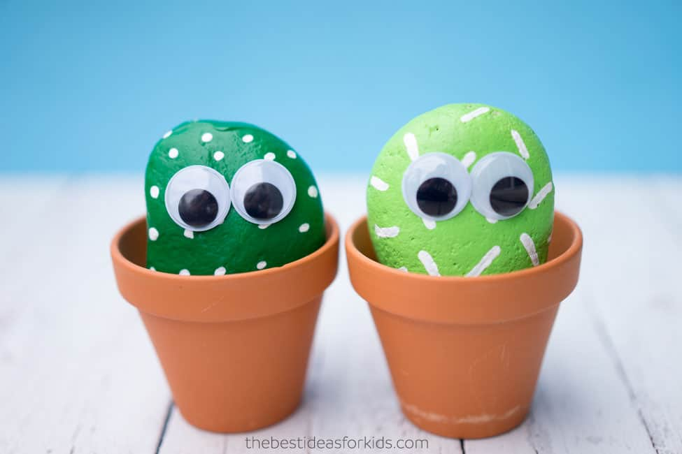 Give your cactus some fun googly eyes and you have a cactus pet rock!