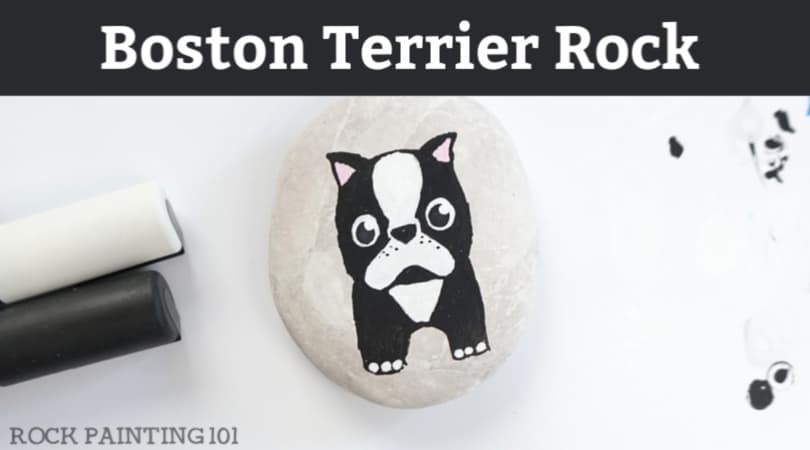 How to paint a Boston Terrier onto a rock
