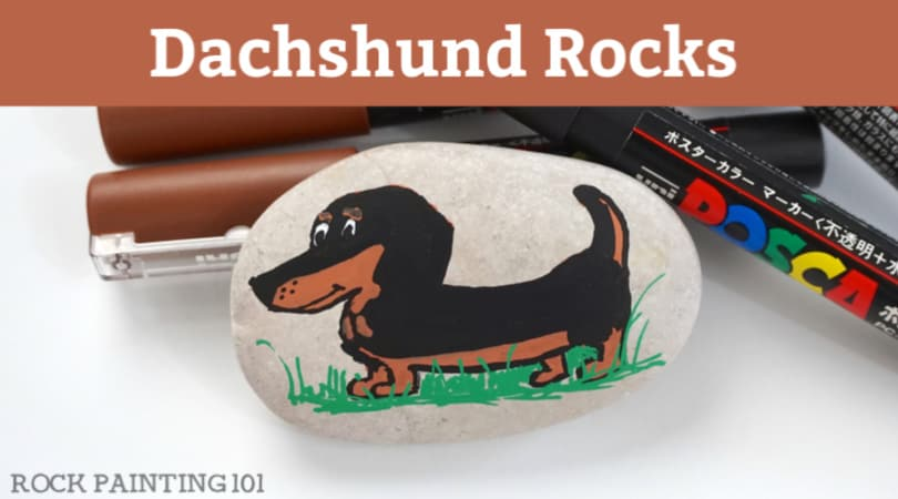 How to paint a dachshund onto a rock