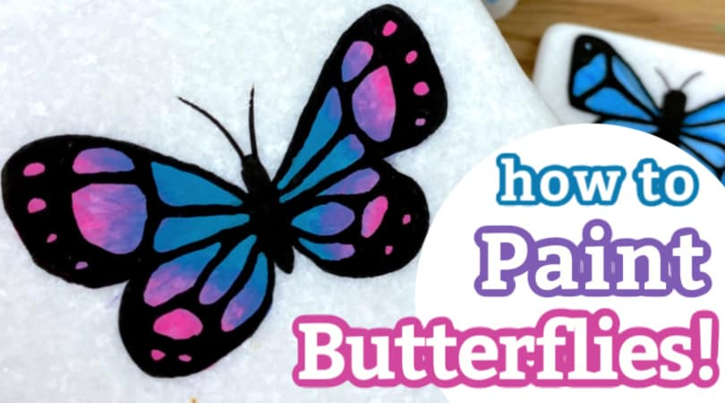 Butterflies for Beginners